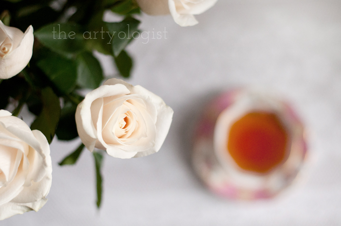 Tea and Cream Coloured Roses, roses closeup, the artyologist