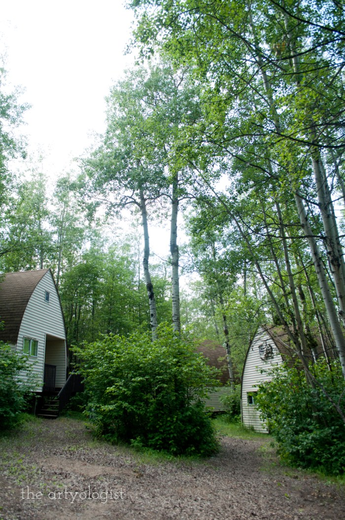 two-cabins, a walk in the woods, the artyologist