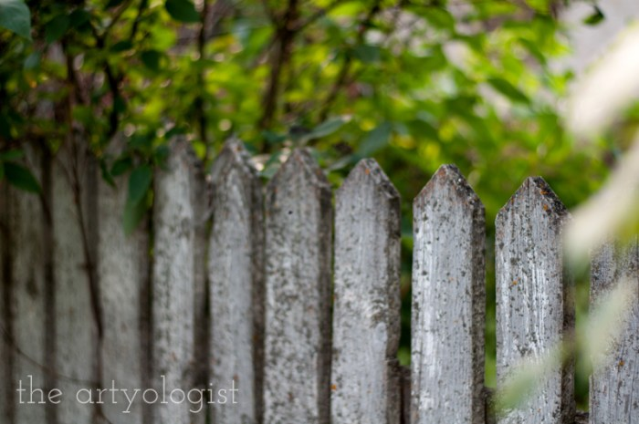 Photo Journal: Fall Time at the Farm, the artyologist, old fence detail