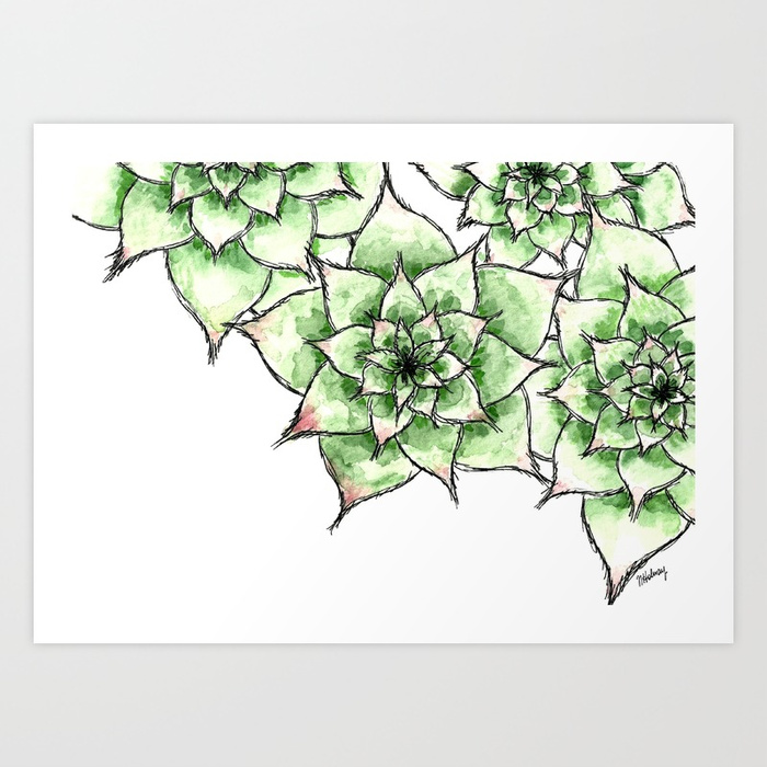 hens and chicks, the artyologist shop