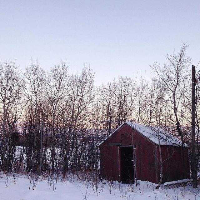 A frosty winters day   liveauthentic livefolk thatsdarling quietinthewildhellip