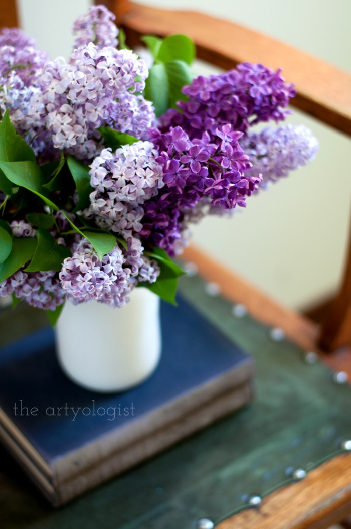 Lilacs to Welcome the First Day of Spring, the artyologist