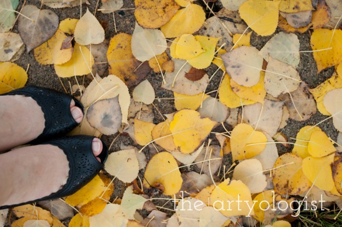 shoes-and-leaves
