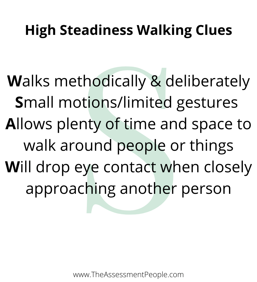 DISC Walking Style of S