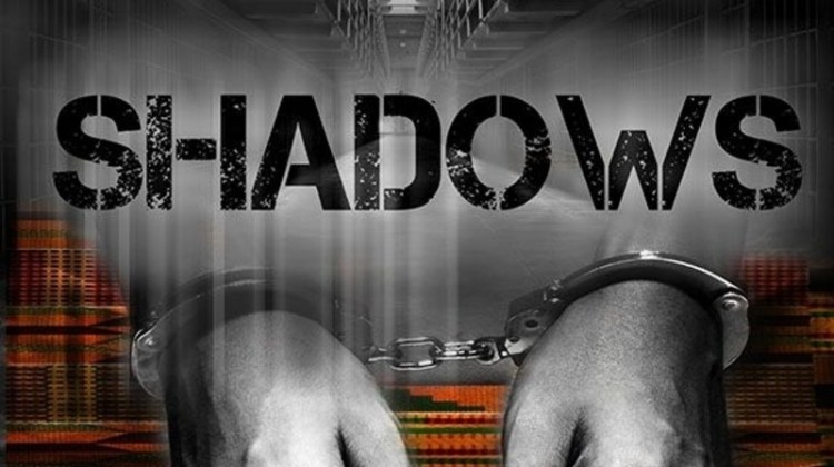 """<div class=""""category-label-interview"""">Interview</div><div class=""""category-label"""">/</div>Interview with Carguil L. G. Webley, writer of Shadows"""