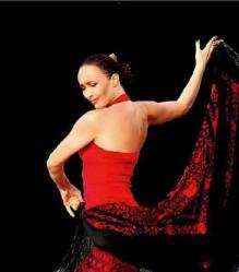 Nueva flamenco