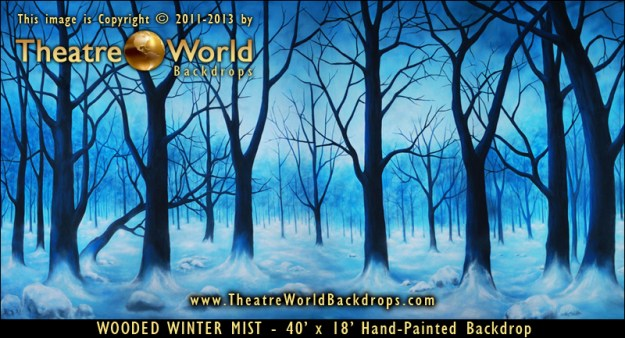 Wooded Winter Mist Professional Scenic Backdrop