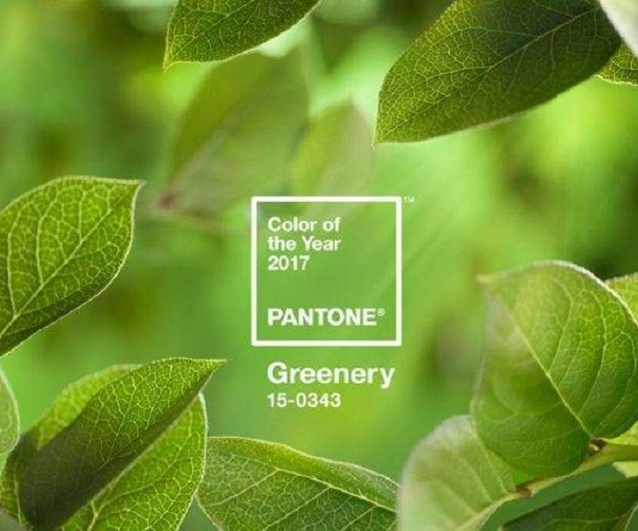 Color of the year – Greenery