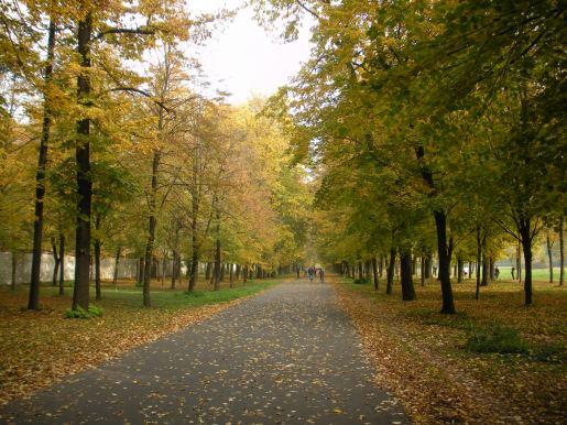 Parco Reale di Monza