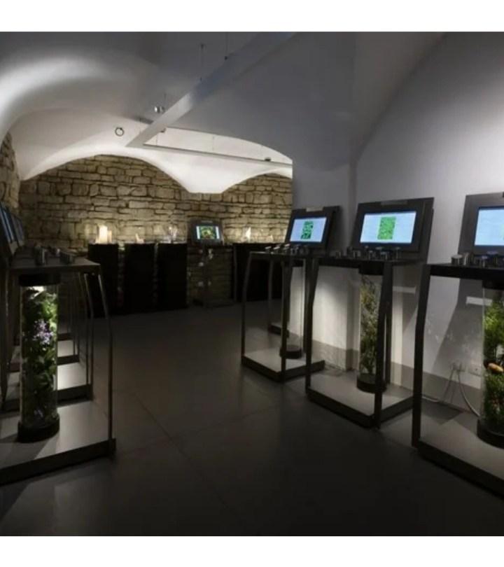 Villoresi ha a aperto il museo del profumo a Firenze