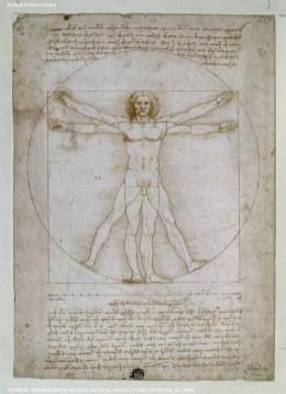 Leonardo da Vinci, Schema delle proporzioni del corpo umano o l'Uomo di Vitruvio, ca 1490, Venezia, Gallerie dell'Accademia