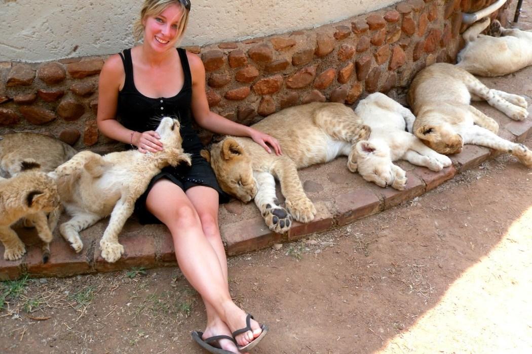 My Top African Wildlife Experiences