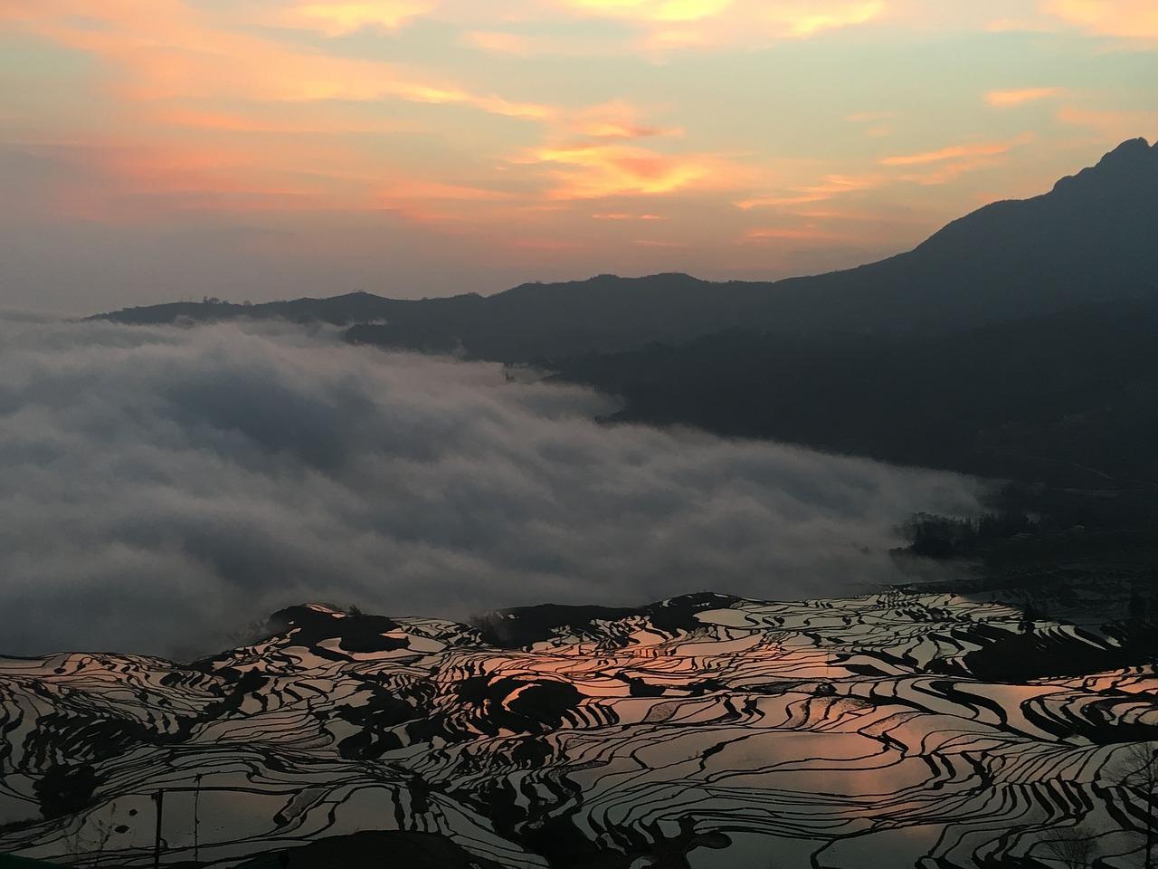 Yuanyang Rice Terraces at Sunset