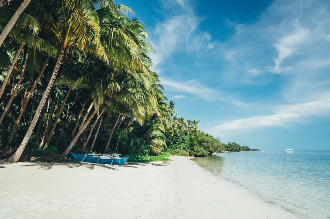Philippines Palm Trees and Beach
