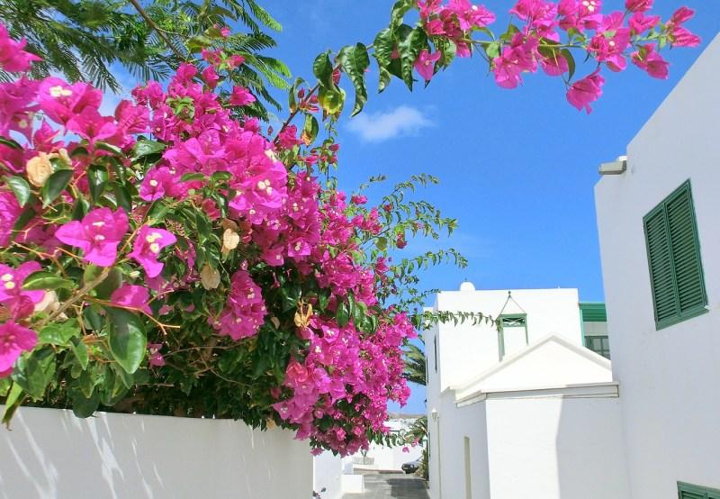 Lanzarote Villa Holiday
