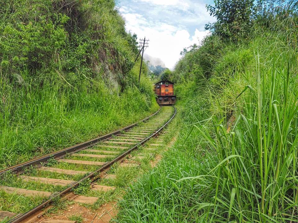 Train in Ella Sri Lanka