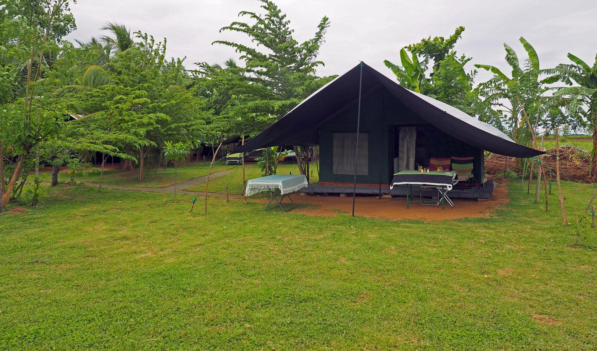 Master Campers Udawalawe Tent