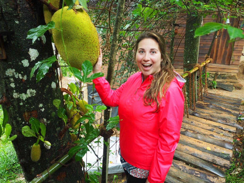 Girl with dragonfruit in Ella Sri Lanka