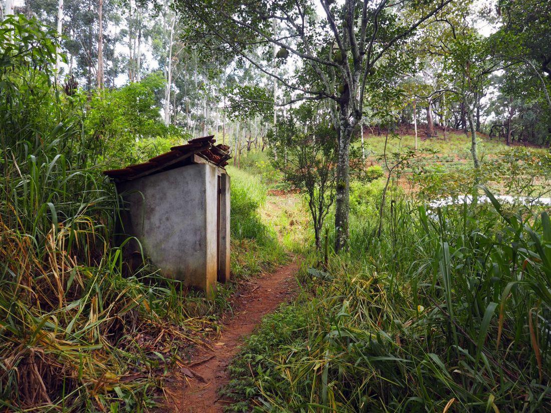 Toilet along way of Ella Rock Hike
