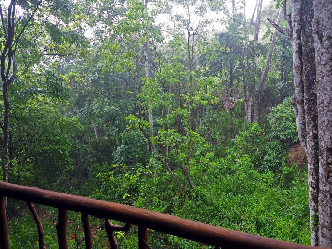 View from Ella Eco Lodge Balcony