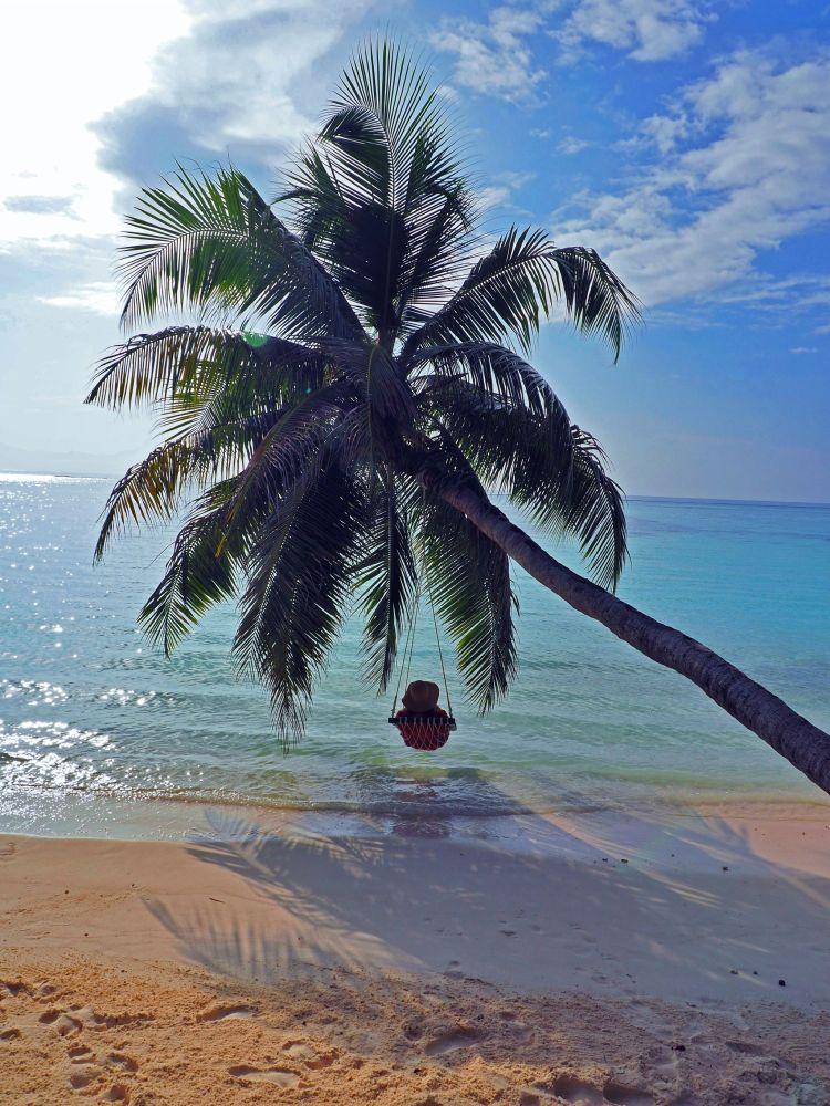 Simone in palm tree chair Maldives