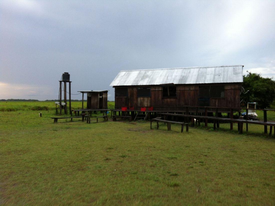 Amazon Bar Pampas Tour