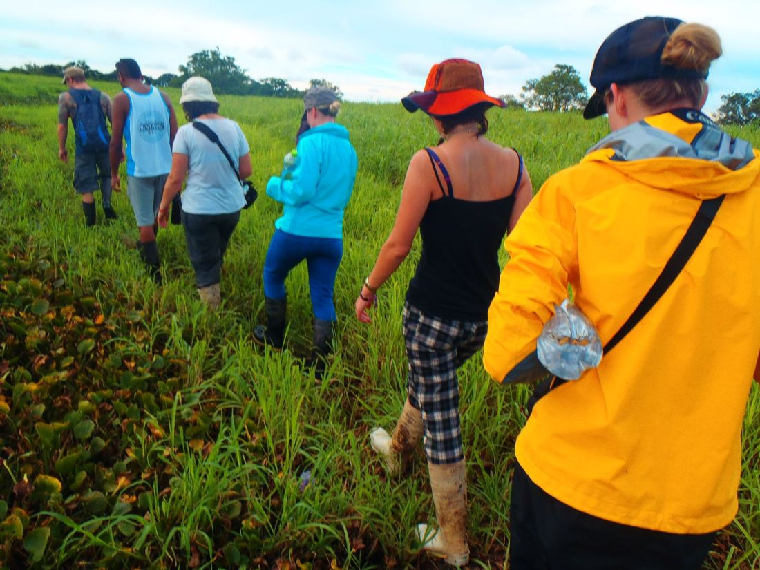 Group searching for Anacondas in Pampas