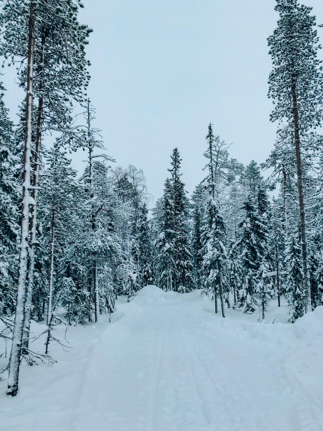 Winter Wonderland Finnish Lapland