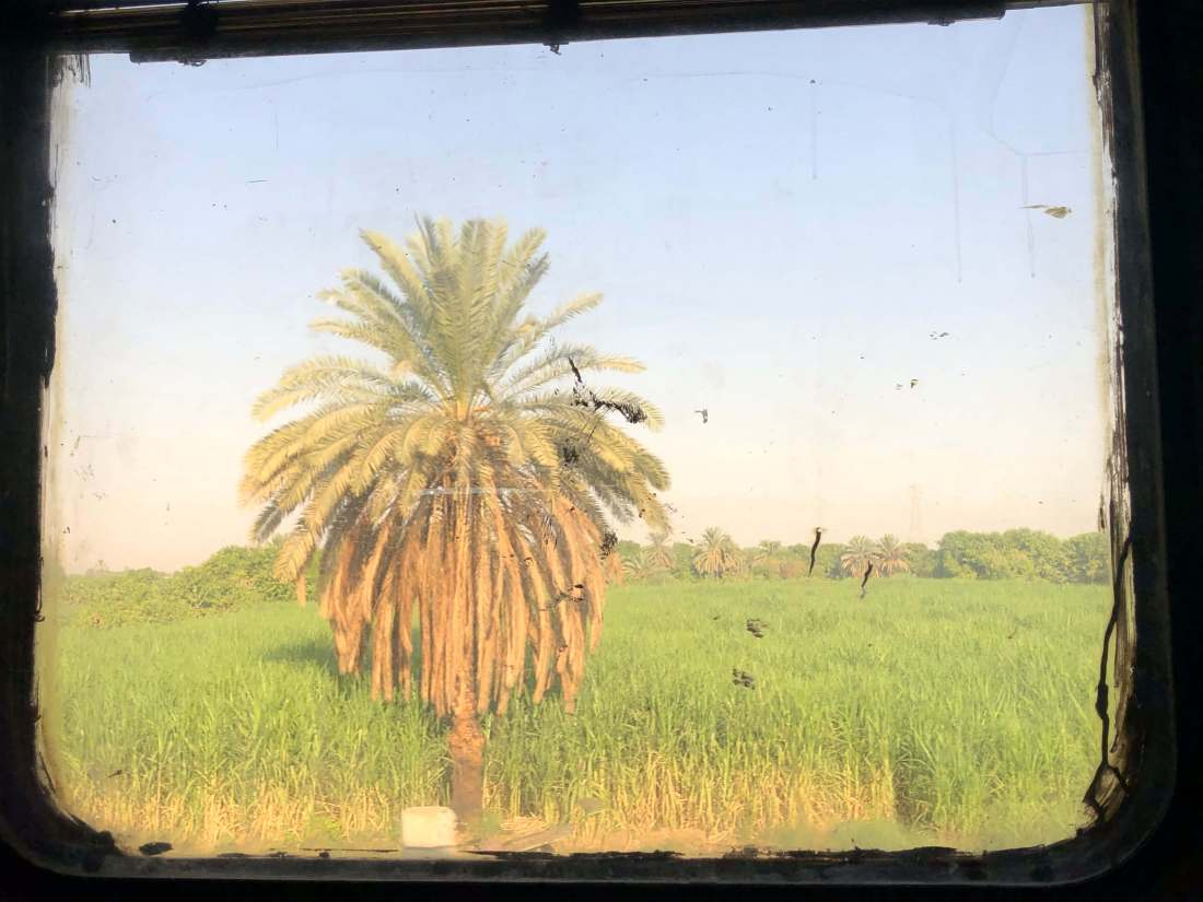 Views from Egypt Train