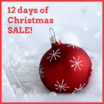12 Days of Christmas Sale at Nature's Treasures!