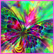 the-austin-alchemist-media-company-offers-body-mind-spirit-news-resources-and-events-rainbow-butterfly pink blue green