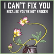 Book – I Can't Fix You–Because You're Not Broken: The Eight Keys to Freeing Yourself From Painful Thoughts and Feelings