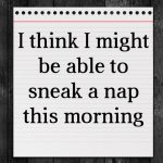 I think I might be able to sneak a nap this morning
