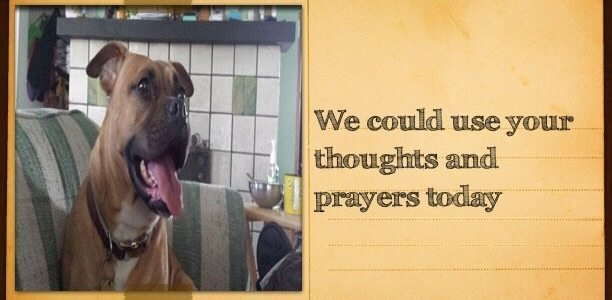 We could use your thoughts and prayers today