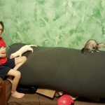 Ferrets have become a real motivator for my kids with #Autism
