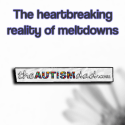 The heartbreaking reality of meltdowns