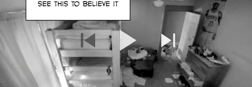 Our Naughty Dog Caught On Camera: You have to see this to believe it (@vivinthome)