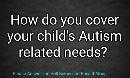Autism Poll: How do you cover your child's #Autism related needs?