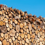 drives-in-the-biomass-industry