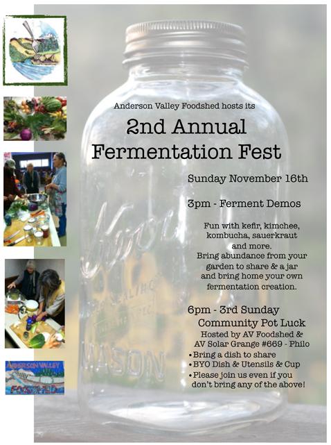 AVFS 2nd Ferment Fest