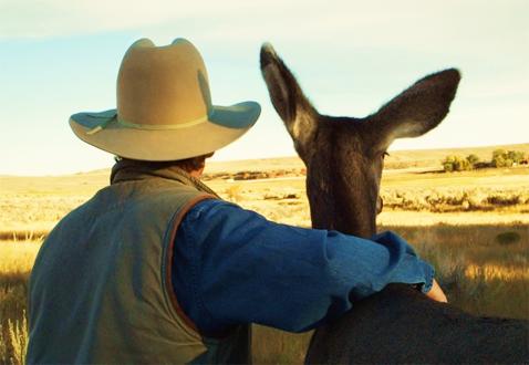 JoeHutto&Deer