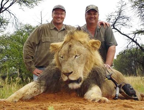 WalterPalmer&Lion