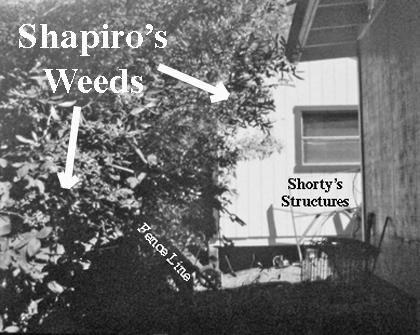 ShapiroWeeds2