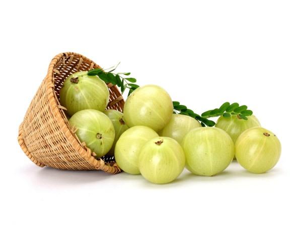 Amla fruit or Indian Gooseberry