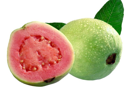 Red guava fruit