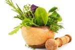 healthy medicinal herbs