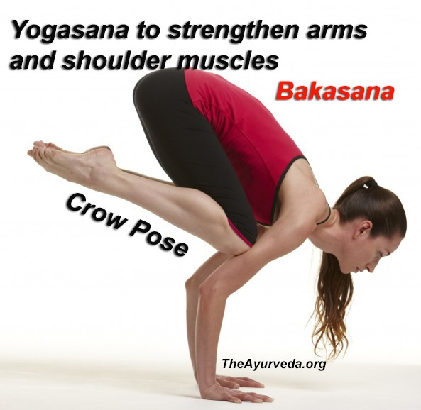 Yogasana to strengthen your arms and shoulder muscles-Bakasana