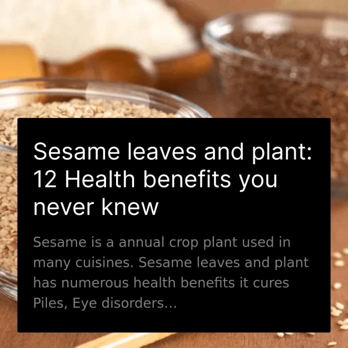 Sesame Leaves Benefits
