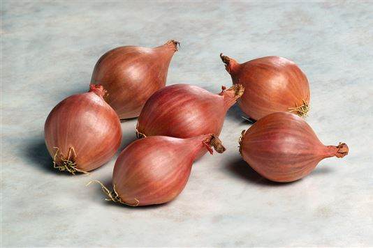 Onion and shallots for health