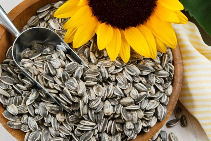 sunflower seeds for health